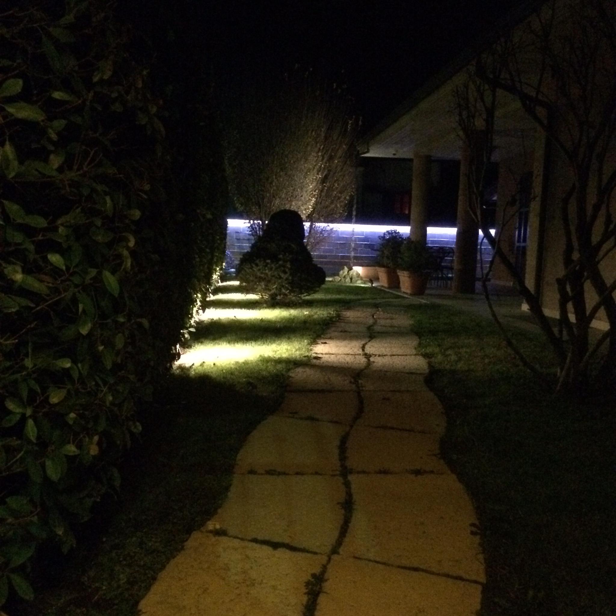 Illuminazione alberi da giardino - Illuminare il giardino ...